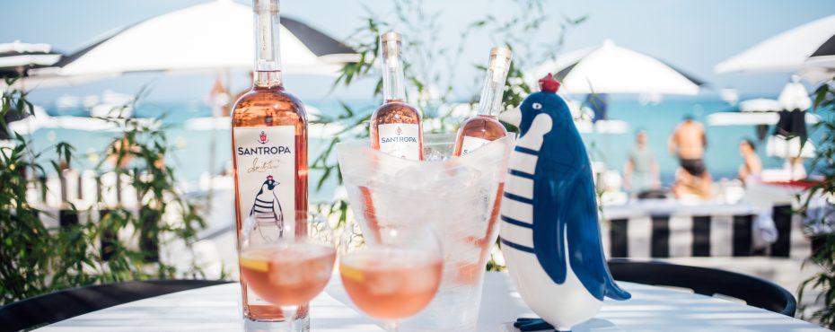 Bebida do verão integra portfólio da Adega São Cristovão