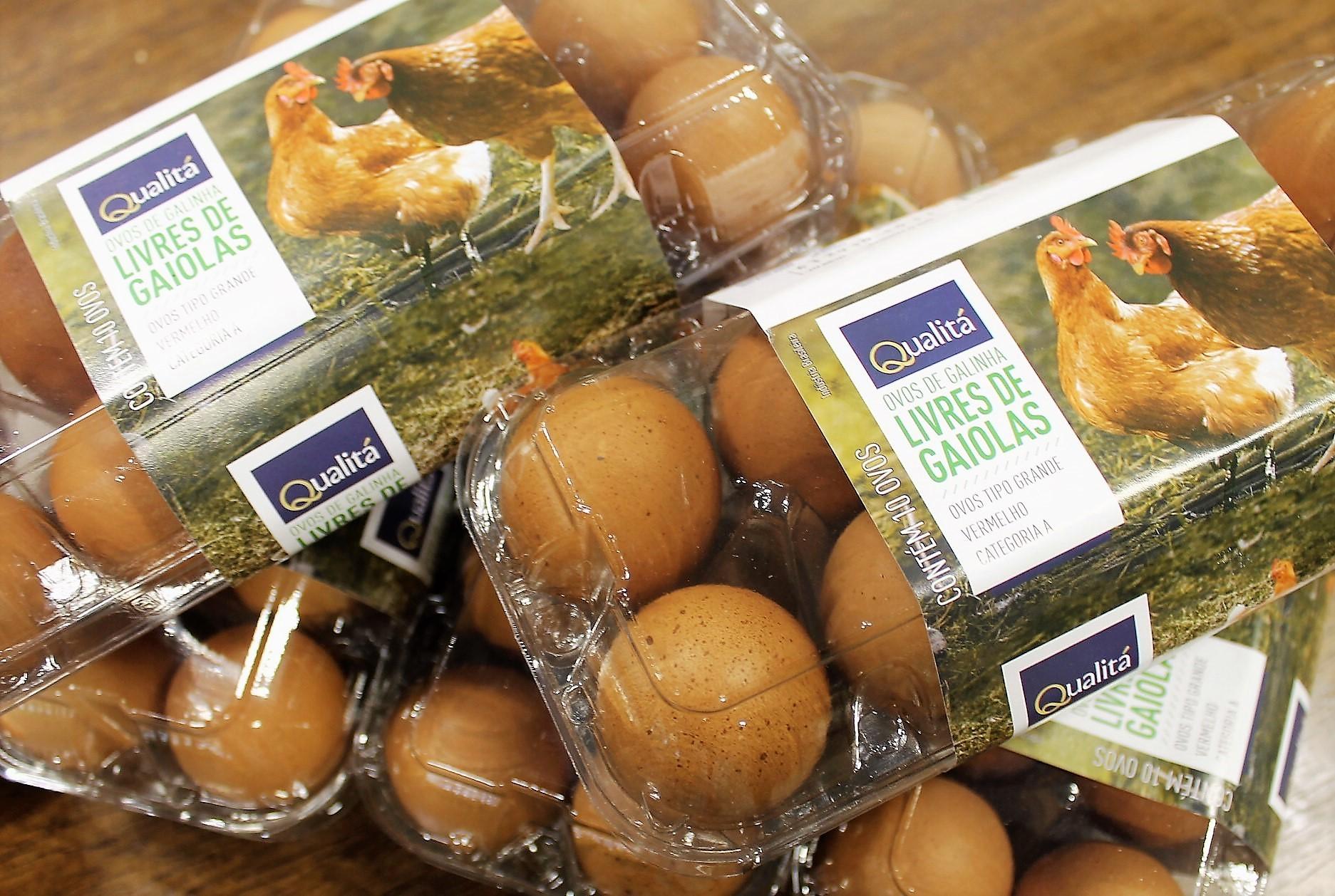 Nordeste recebe linha Qualitá de ovos de galinhas criadas sem gaiola